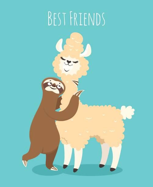 Llama and sloth. Alpaca with sloth lazy bear. Baby t-shirt design, funny poster Llama and sloth. Alpaca with sloth lazy bear. Baby t-shirt design, funny vector poster baby sloth stock illustrations
