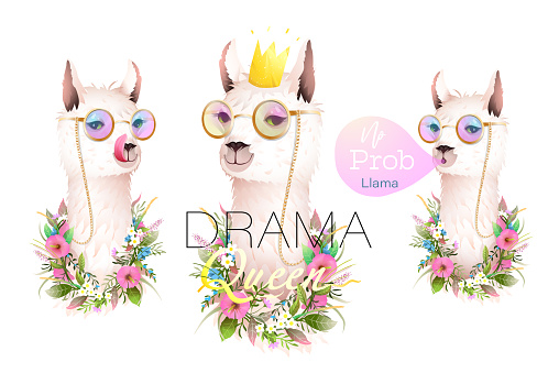 Llama Drama Queen and No Problem Design Collection