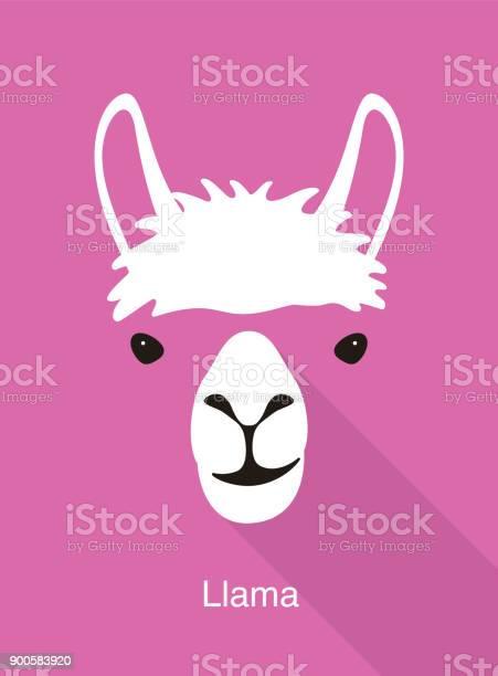 Llama face flat icon design vector illustration vector id900583920?b=1&k=6&m=900583920&s=612x612&h=bhodndbdidab jqenve6l5wetl6shxxriovqjrzvesi=