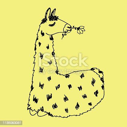 Llama vector doodle