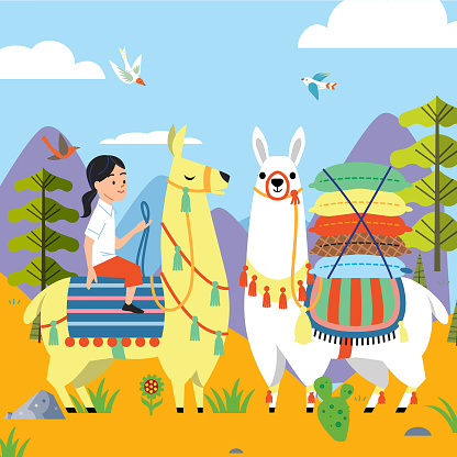 Llamas on the mountain