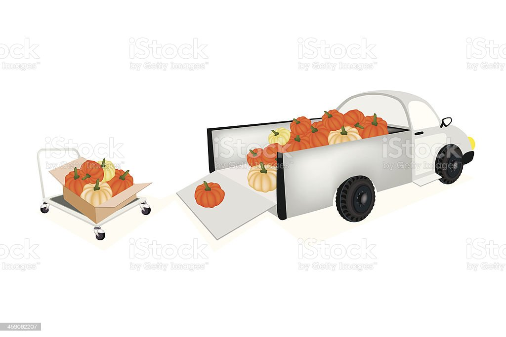 Loading Fresh Pumpkins into Pickup Truck royalty-free loading fresh pumpkins into pickup truck stock vector art & more images of agriculture