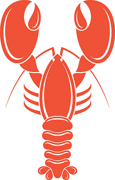 Lobster vector art illustration