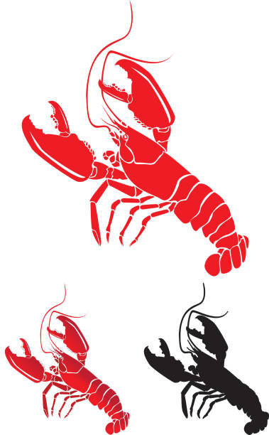 Lobsters with Large Claws, detailed and Silhouette vector art illustration