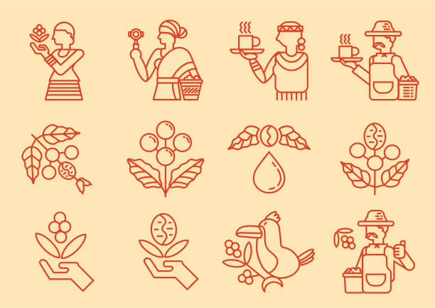 illustrazioni stock, clip art, cartoni animati e icone di tendenza di local coffee farmer line icon with coffee tree - coffee farmer