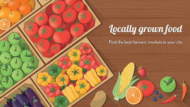 Locally grown food Colorful freshly harvested vegetables in crates at the farmers market, locally grown food and healthy eating concept banner farmer's market stock illustrations