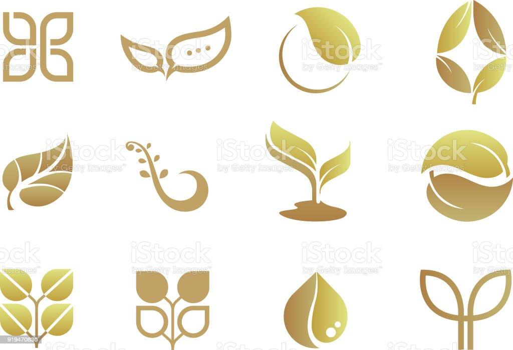logo design set (leaf motif) / gold color vector art illustration