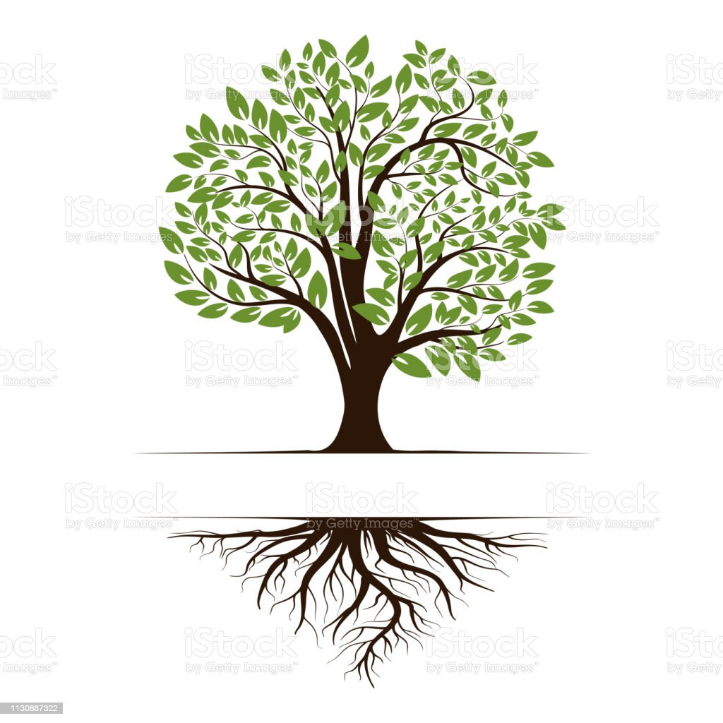 Logo of a green life tree with roots and leaves. Vector illustration icon isolated on white background. royalty-free logo of a green life tree with roots and leaves vector illustration icon isolated on white background stock illustration - download image now