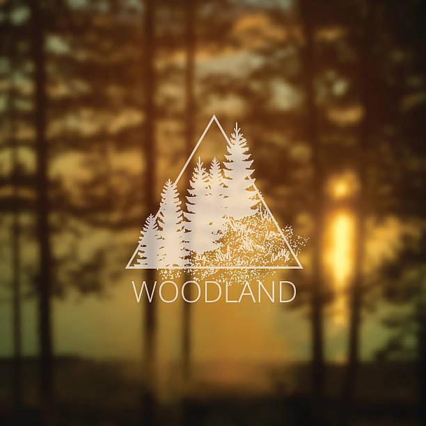 ilustraciones, imágenes clip art, dibujos animados e iconos de stock de logo with forest trees - lago