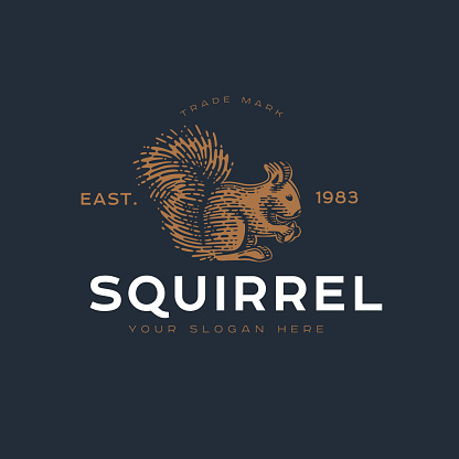 Logotype of the squirrel.