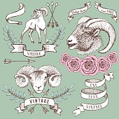 Logotypes with rams, ribbons and roses