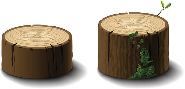 Logs or Tree Stumps Logs or tree stumps moss stock illustrations