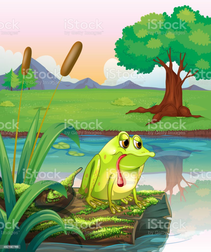 lonely frog above the wood with algae royalty-free stock vector art
