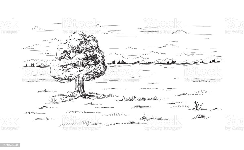 lonely tree standing in the middle of the field vector art illustration