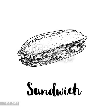 Long chiabatta sandwich with ham slices, cheese, tomatoes and lettuce leaves. Hand drawn sketch style. Fast food drawing for restaurant menus, street food packages. Vector illustration. EPS10 + JPEG preview.