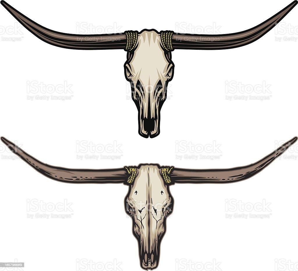 Longhorn Skull vector art illustration