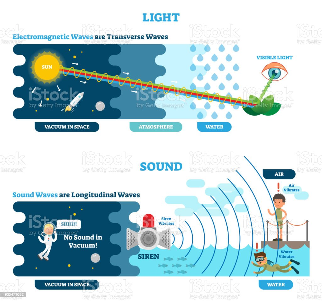 Longitudinal and transverse wave type vector illustration scientific longitudinal and transverse wave type vector illustration scientific diagram sonic and visual perception principle ccuart Images