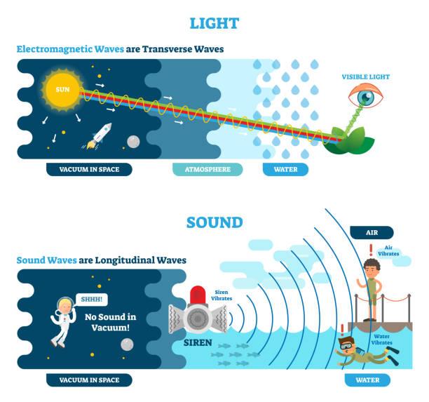 ilustrações de stock, clip art, desenhos animados e ícones de longitudinal and transverse wave type, vector illustration scientific diagram. sonic and visual perception principle. - longitude