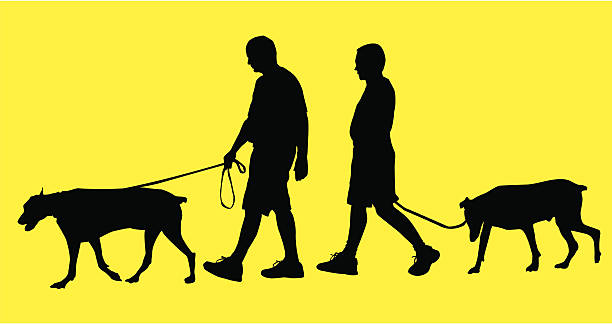 Longtime Companion ( Vector ) Boomer couple walking dogs. Silhouette. svg stock illustrations