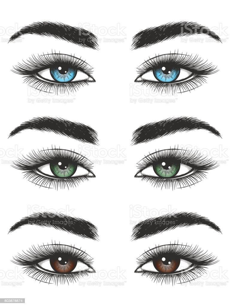 Aussehen der bunten weiblichen Augen – Vektorgrafik
