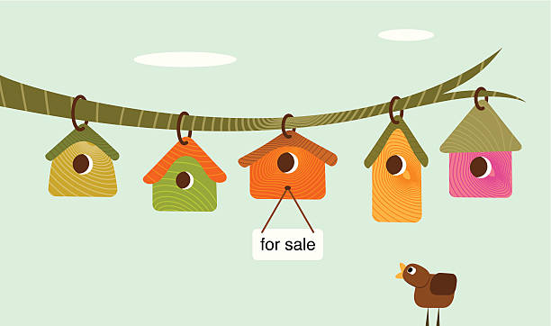 Looking for a house vector art illustration