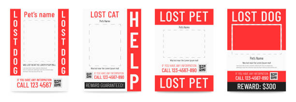 lost cat or dog poster, missing pet banner template. - lost stock illustrations