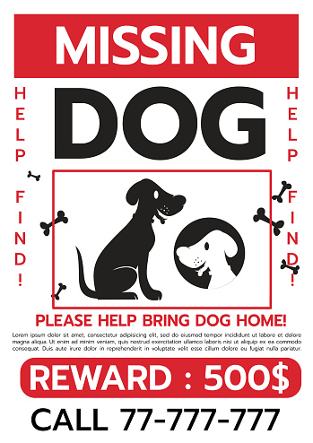 Lost Dog. Reward for the find. Missing poster template. Lost pet poster. Sheet with the announcement of disappearance of pet on bulletin board. Vector illustration flat design. Isolated on white background.