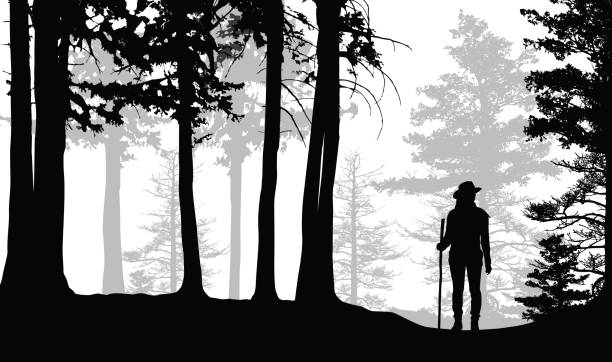 lost hiker in the woods - lost stock illustrations