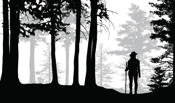 숲에서 잃어버린된 등산객 - lost stock illustrations