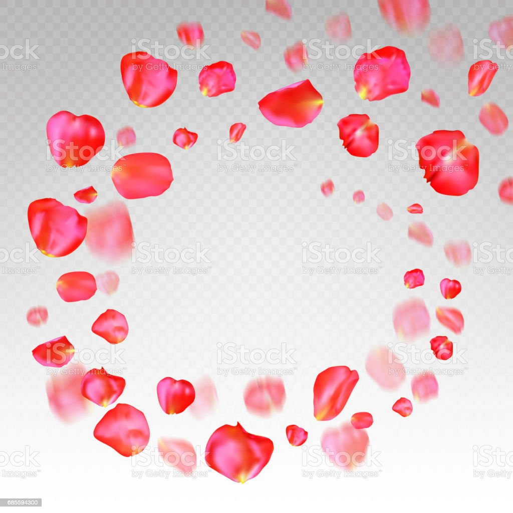 A lot of falling red rose petals on transparent background 免版稅 a lot of falling red rose petals on transparent background 向量插圖及更多 動作 圖片