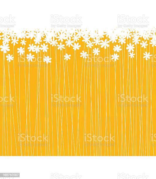 Lot of white flowers in a orange field vector id165752007?b=1&k=6&m=165752007&s=612x612&h=zydsmydrruaxrjacswk8fcyyoq3xukjii 3edrqv800=