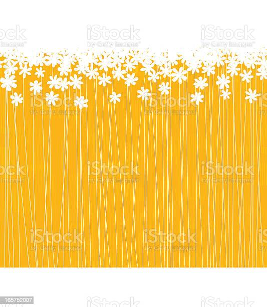 A Lot Of White Flowers In A Orange Field Stock Illustration - Download Image Now