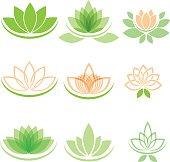 Lotus and yoga