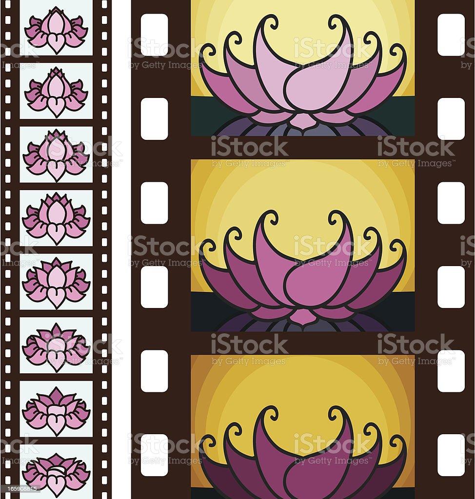 Lotus Flim Strips vector art illustration