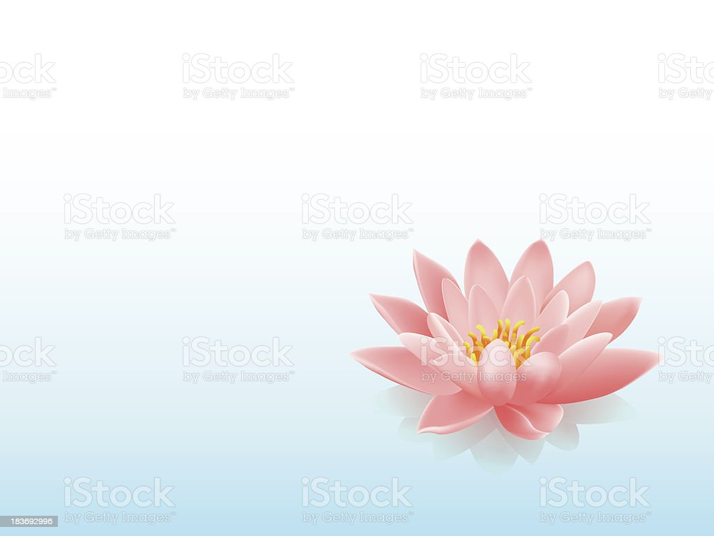 Lotus Flower Background Stock Vector Art More Images Of Beauty In