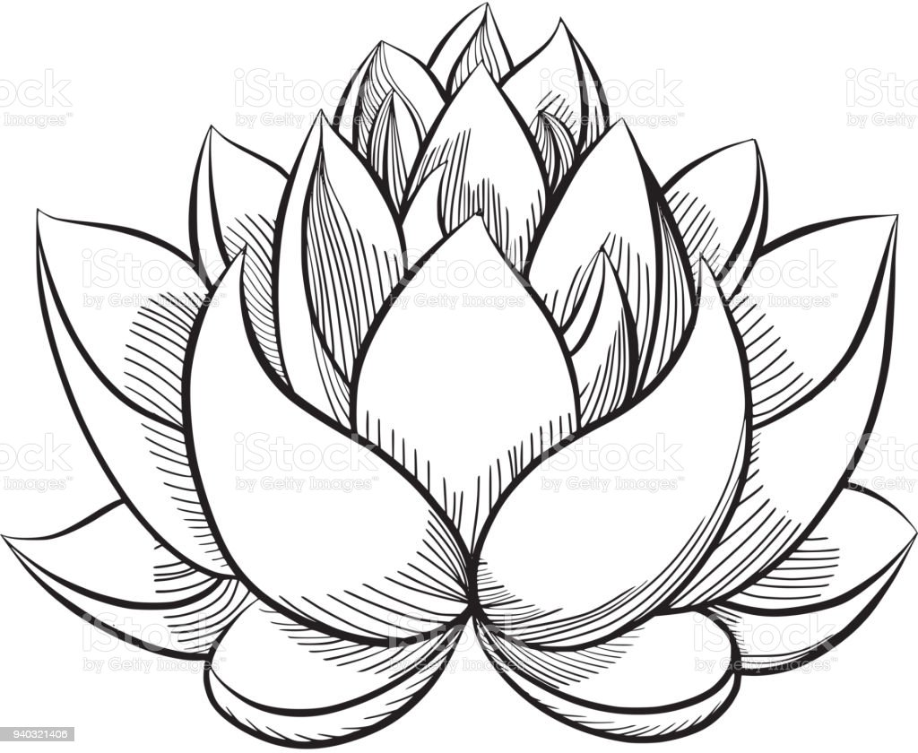 Lotus flower bloom stock vector art more images of abstract lotus flower bloom royalty free lotus flower bloom stock vector art amp more izmirmasajfo