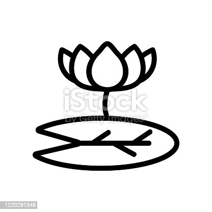 lotus flower icon vector. lotus flower sign. isolated contour symbol illustration