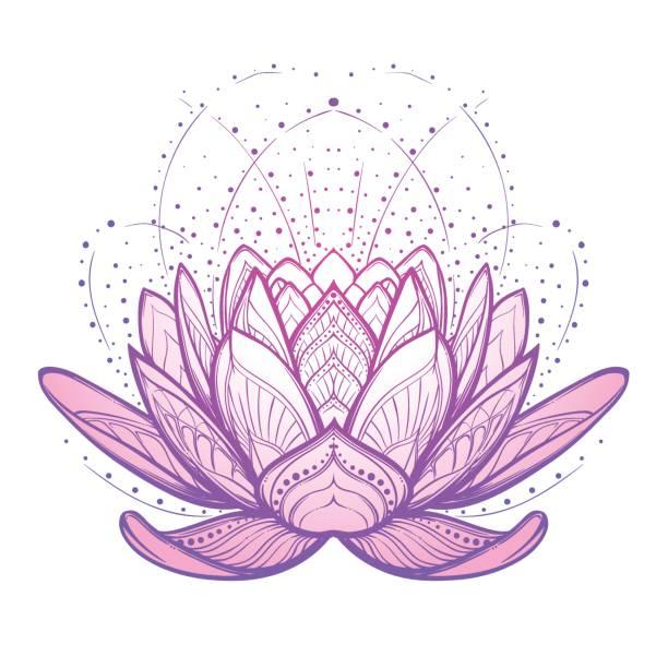 ilustrações, clipart, desenhos animados e ícones de flor de lótus. desenho linear estilizado intricado isolado no fundo branco. - lotus