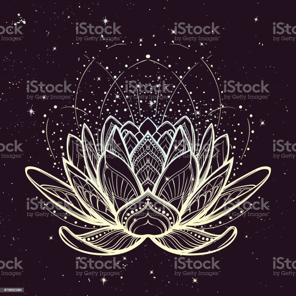 Lotus flower. Intricate stylized linear drawing on starry nignt sky background.
