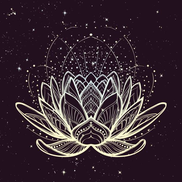 Lotus flower. Intricate stylized linear drawing on starry nignt sky background. vector art illustration