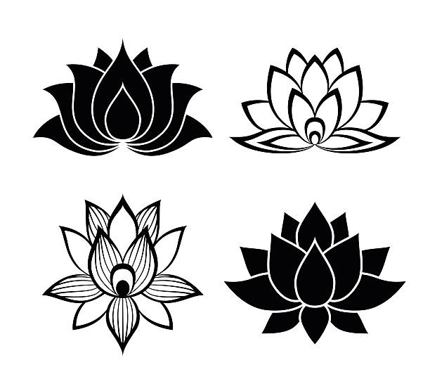 Lotus Flower Line Drawing Vector Free Download : Royalty free lotus flower clip art vector images
