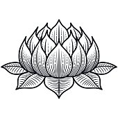 Lotus Flower Silhouette Illustration - VECTOR