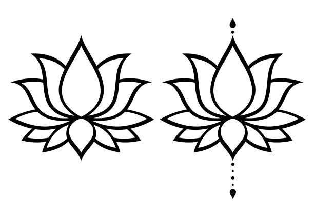 Lotus Flower Vector Art Graphics Freevector Com