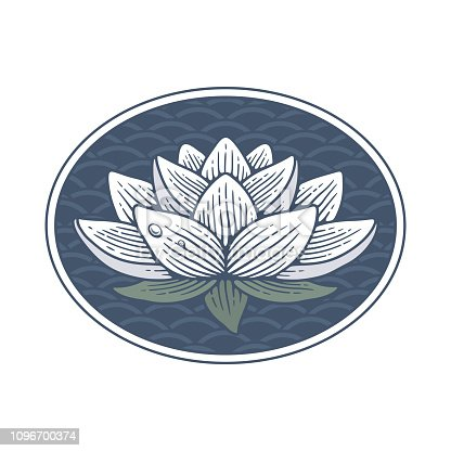 Lotus flower on water background