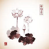 Lotus flowers hand drawn with ink in vintage style.  Traditional Japanese ink painting sumi-e Contains hieroglyphs - zen, freedom, nature, beauty