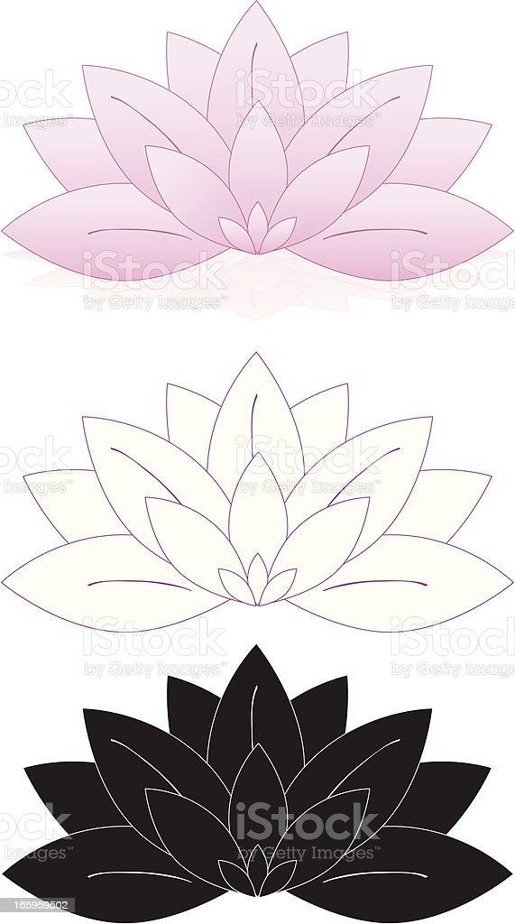 Lotus Flowers, Water Lilies Set (Pink, White, Black) vector art illustration