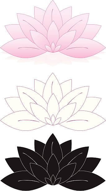 Royalty Free Water Lily Clip Art, Vector Images ...