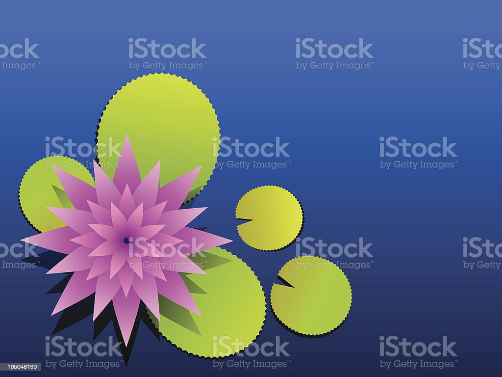 Lotus in a pond royalty-free stock vector art