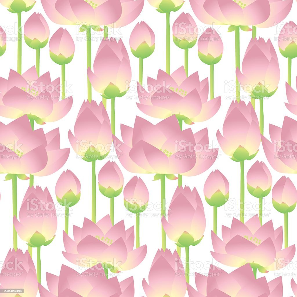 lotus lilies decorative floral element. vector illlustration vector art illustration