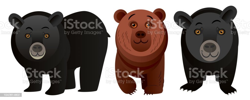 Louisiana Black Bear vector art illustration
